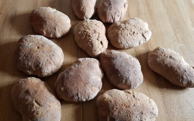 Dinkelbrote im Holzofen gebacken
